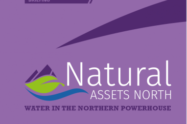 Pressure on water supply could put Northern Powerhouse projects at risk, says IPPR North.