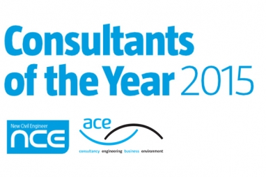 NCE/ACE Consultants Awards 2015