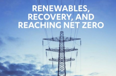Falling cost of renewables strengthens case for accelerating deployment, says NIC report.