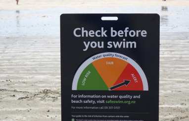 Auckland Council and Mott MacDonald worked together to develop a digital twin of local beaches.