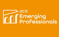 The ACE emerging professionals network gets set for mentoring webinar on 27 August.