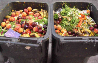 The strategy includes recommendations for weekly collection of food waste for households and appropriate businesses.